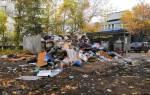 Отзыв о Вывоз мусора в Королёве