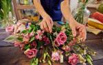 Компания «Флорист» отзывы