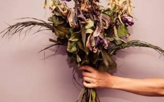 Доставка цветов от магазина fanflower.ru отзывы