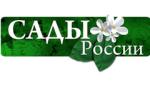 Отзыв о Магазин ЛучшийСтроитель.РФ