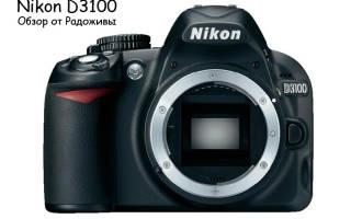 Отзыв о Nikon D3100